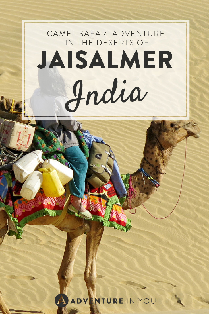 Want to travel to India? Go on a camel safari adventure in the deserts of Jaisalmer!