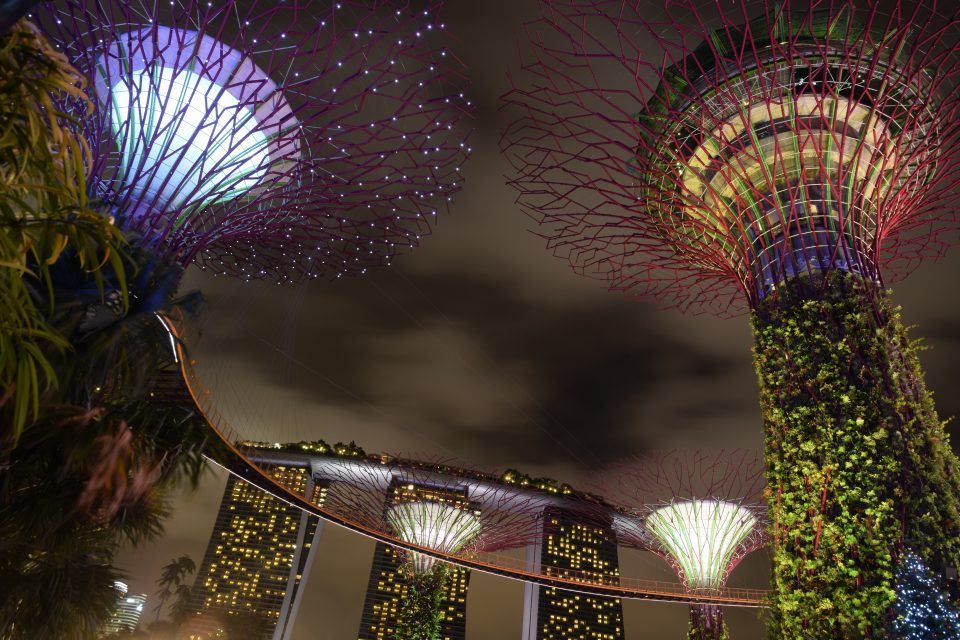 Garden By The Bay East Firework best places to watch fireworks in singapore on national day