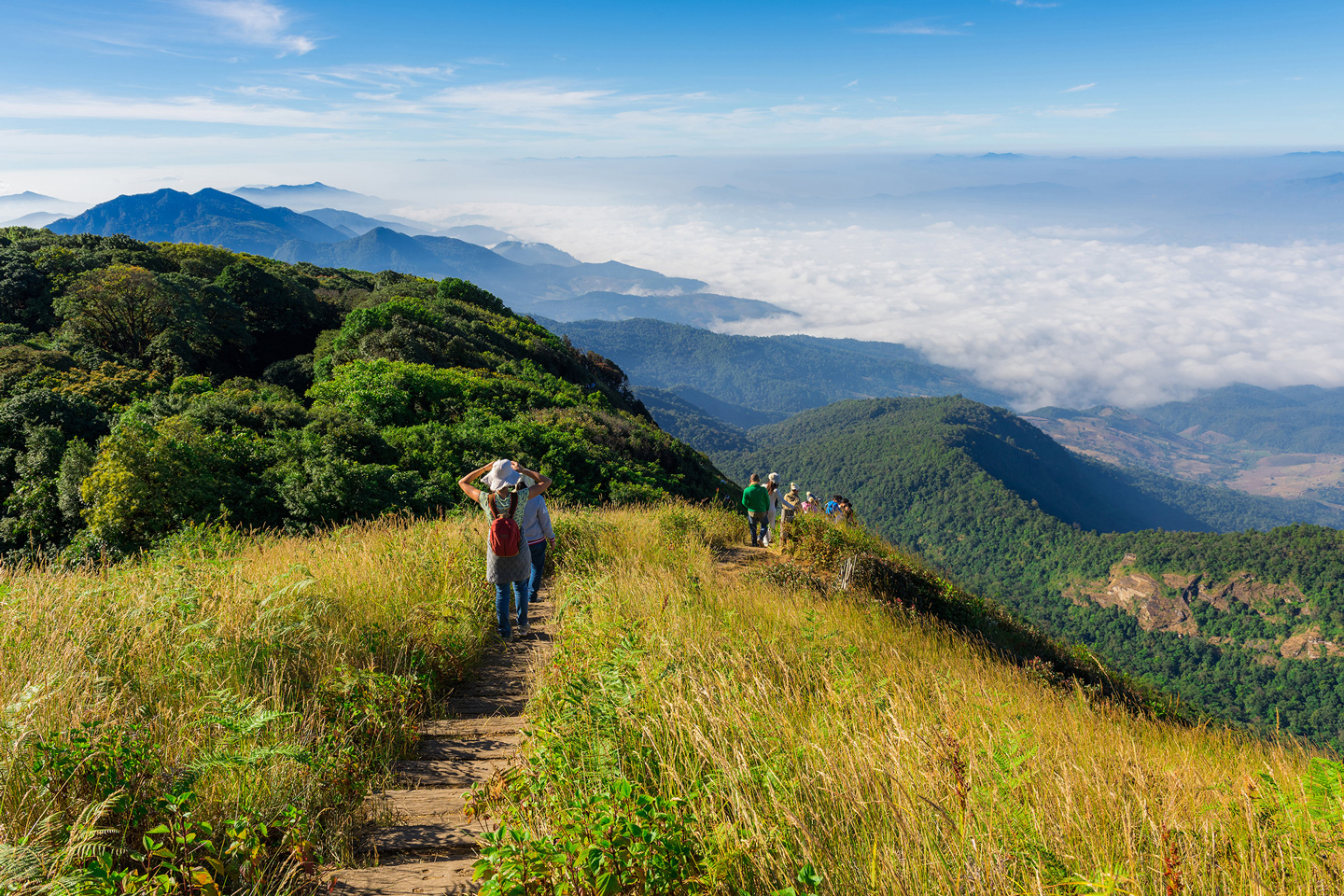 Everything You Need to Know About Camping in Doi Inthanon ...