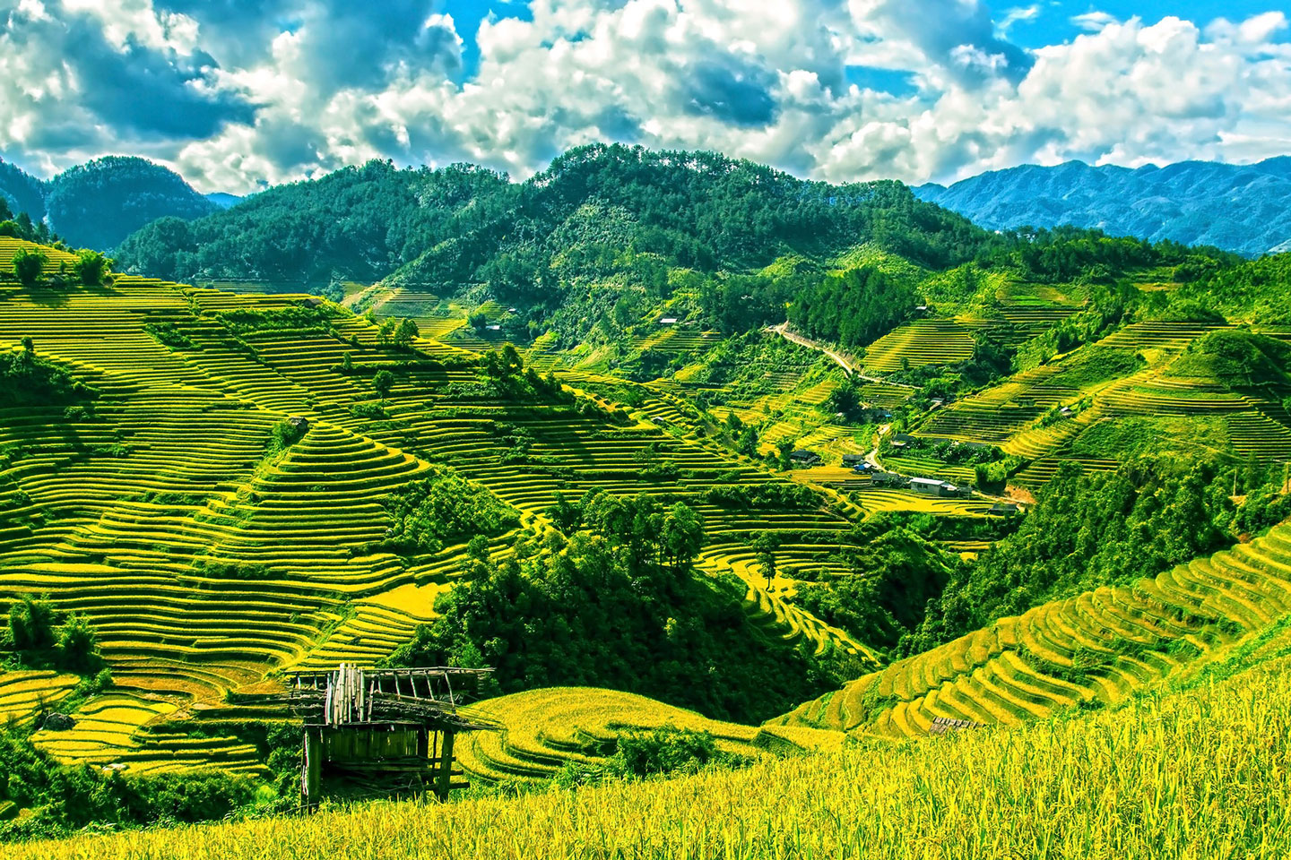 Adventurous Things to Do in Vietnam: The Ultimate List