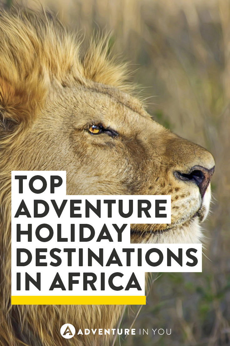Thinking of heading to Africa? Take a look at the top adventure holiday destinations waiting to be explored.