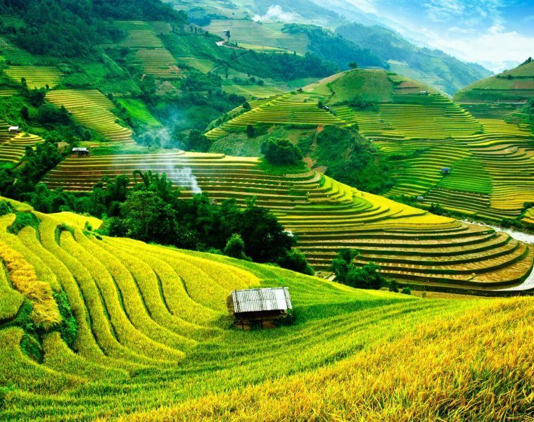 Vietnam Travel Tips: A Complete Guide to the Country