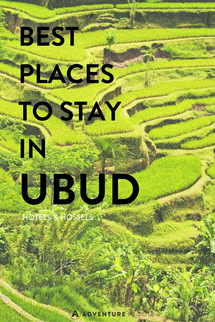 Ubud Bali | Looking for the best place to stay while in Ubud Bali? Here are our recommendations