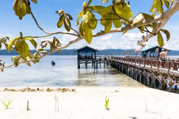 Jetty to beach in Raja Ampat, Indonesia