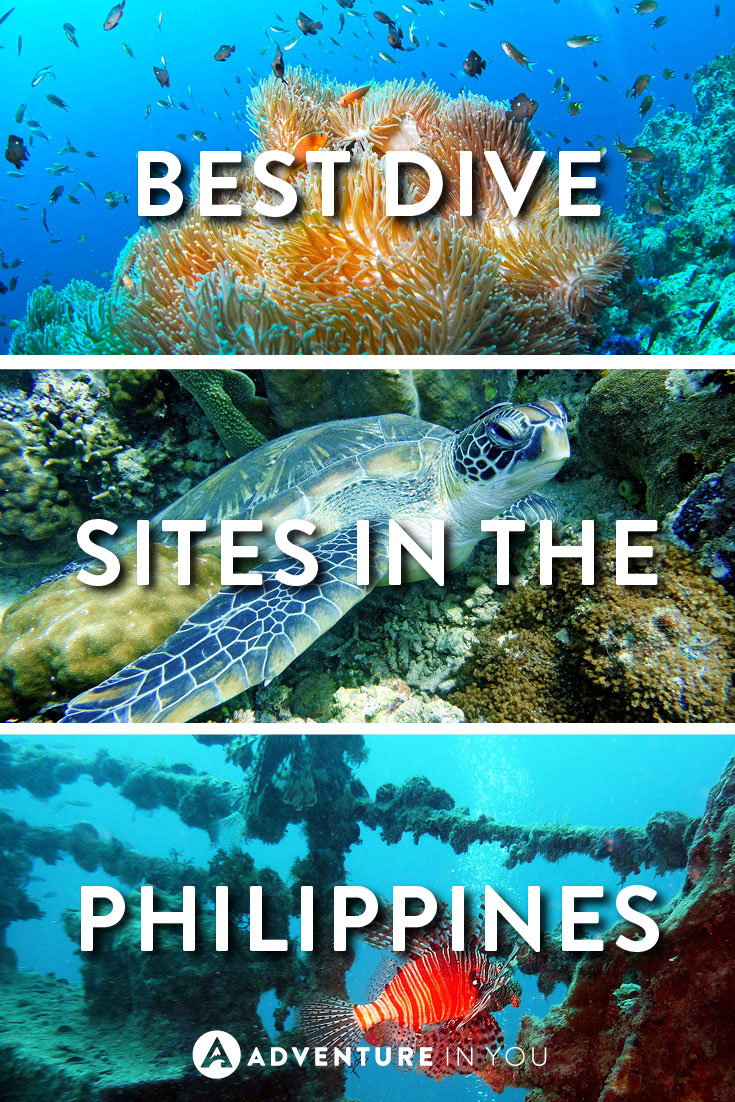 Philippines diving best dive sites you need to visit - Best dive sites ...