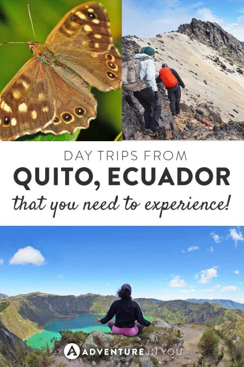 Quito Ecuador   Looking for fun day trips from Quito? Here are a few of our top picks from hiking Cotopaxi to seeing the Quilotoa Lake, there are so many things to see and do while you're in this town.